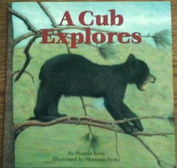 Picture of A Cub Explores